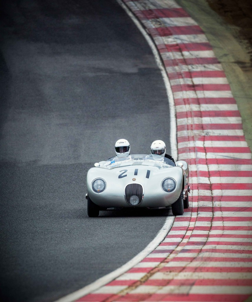 Image-two-Jaguary-C-TYPE